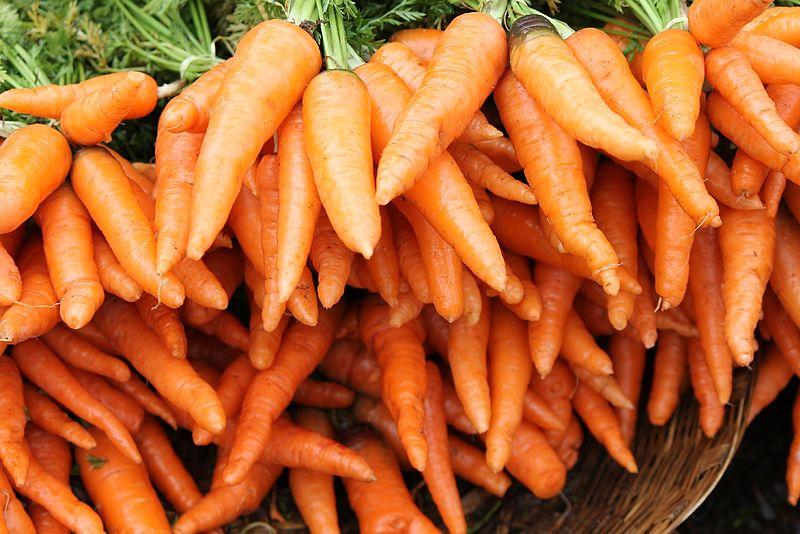 Kada rauti morkas
