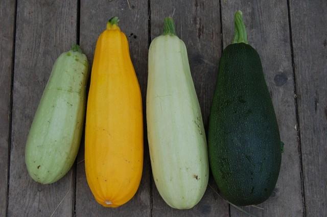 Cukinijų spalvų įvairovė